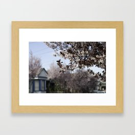 Pink Plum Blossoms, Blue House Framed Art Print