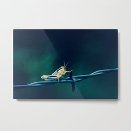 Hopper Three Metal Print