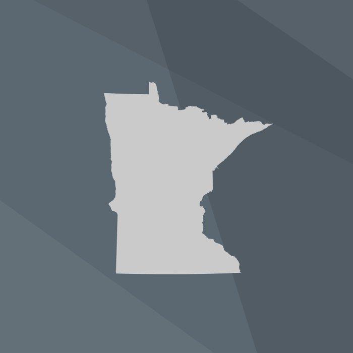 Minnesota State Comforters