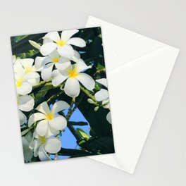 Hawaiian Tropical Plumeria Flowers With Peep of Sky Stationery Cards