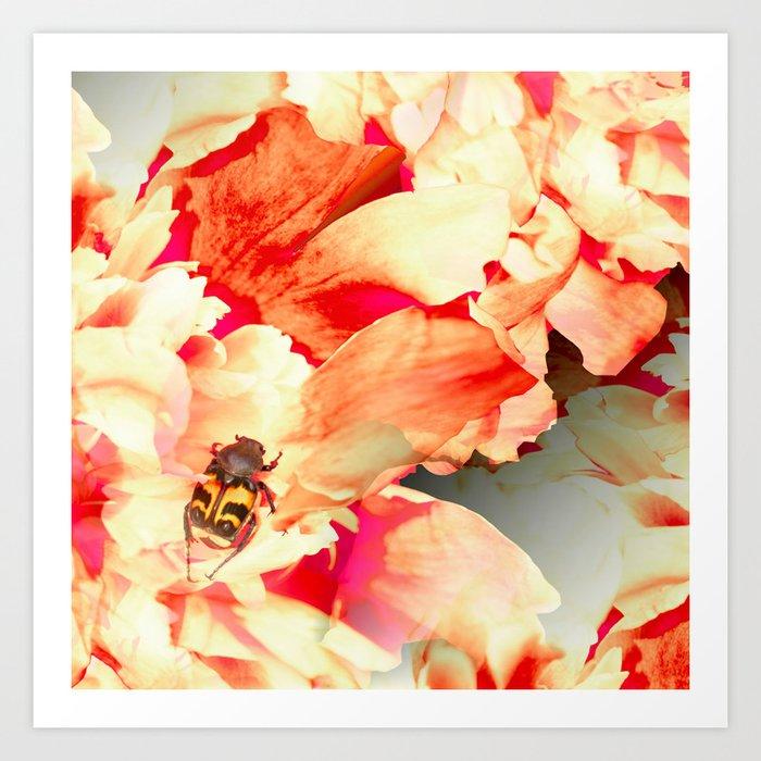 Beautiful Beetle on Peony Flowers #decor #society6 #buyart Art Print