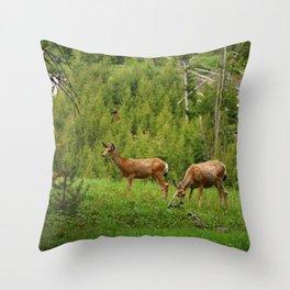 Wapiti In Yellowstone N P Throw Pillow