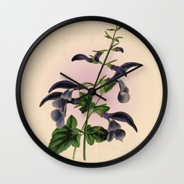 Blue Salvia - Vintage styled seed packet Wall Clock