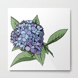 Hydrangea Blue Metal Print