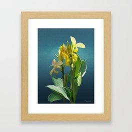 Spade's Yellow Canna Lily Framed Art Print