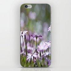 Daisy Bokeh iPhone & iPod Skin