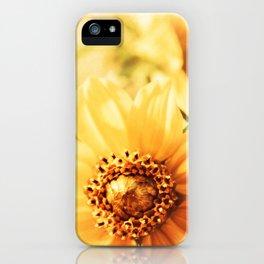 Marsh Marigolds iPhone Case