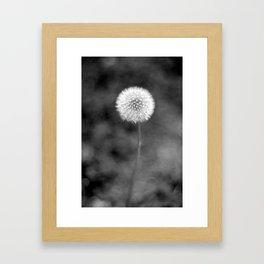 Dreams In The Making Framed Art Print