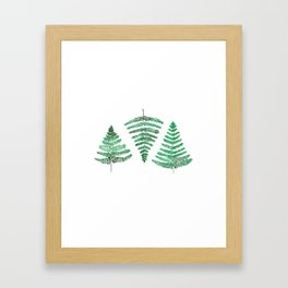 Fiordland Forest Ferns Framed Art Print
