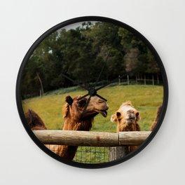 Camel Kisses Wall Clock