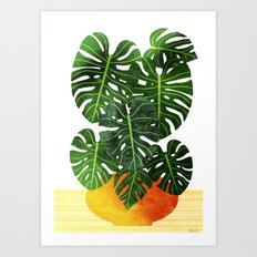 Swiss Cheese Plant Art Print