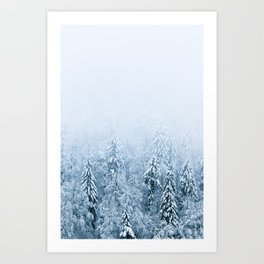 Snow covered beech spruce forest in fog Art Print