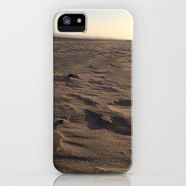 Swansea Beach iPhone Case