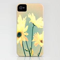 I Dream of Daisy iPhone (4, 4s) Slim Case