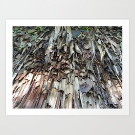 brown palm leaf texture pattern Art Print