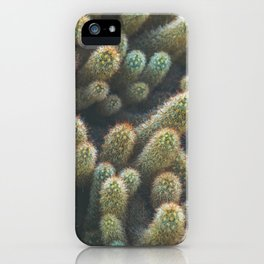 Botanical Gardens - Cactus #596 iPhone Case