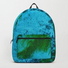 Spring Run Backpack