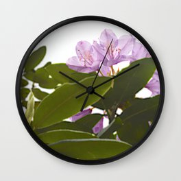 Pink Azalea Flowers with Spring Green Leaves Wall Clock