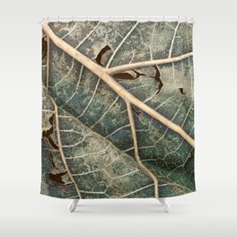 Organic Decay Shower Curtain