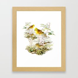 Yellowhammer Framed Art Print