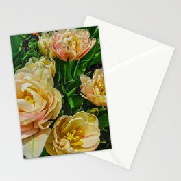 Early Summer Flowers Stationery Cards