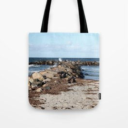 Breakwater at the Baltic beach - Wellenbrecher am Ostseestrand Tote Bag