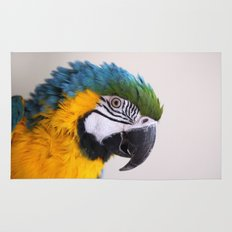 Blue-and-yellow macaw Rug