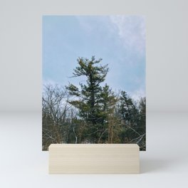Lonely tree in the forest Mini Art Print