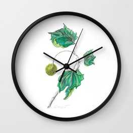 Sycamore 01 Botanical Flower Wall Clock