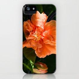 Apricot Hibiscus iPhone Case