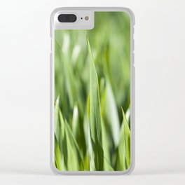 Agriculture. cereals. Spring Clear iPhone Case