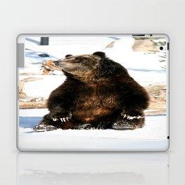 Chillin' Bear Laptop & iPad Skin