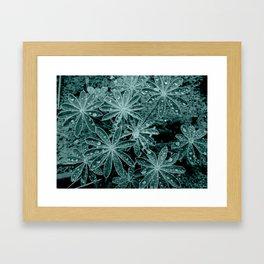 Raindrops III Framed Art Print