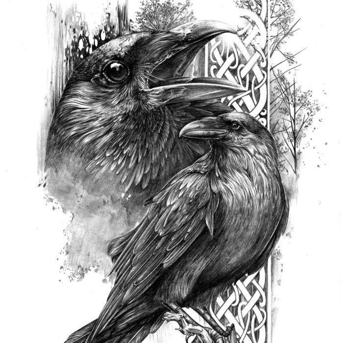 huginn and muninn michelle s have comforters by mhavedesign
