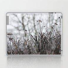 frozen. Laptop & iPad Skin