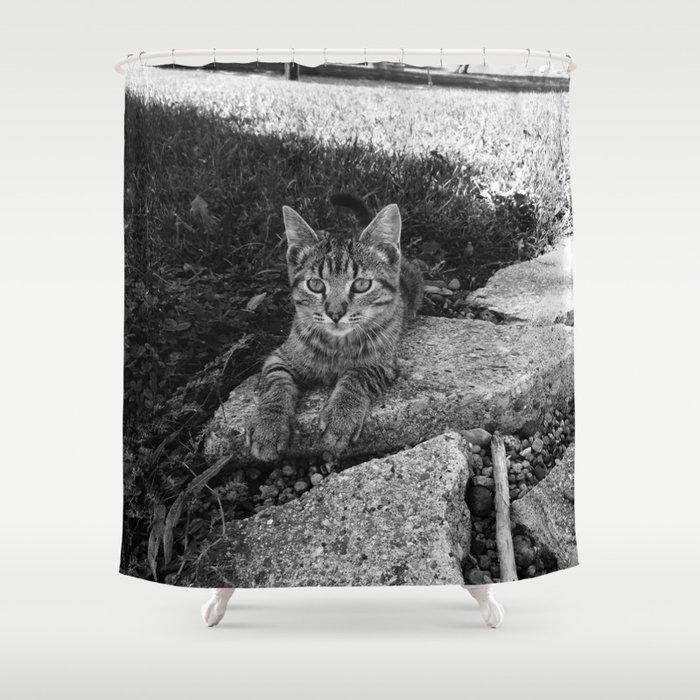 Sittin Kitten Shower Curtain