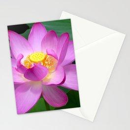 Lotus Vivid Stationery Cards