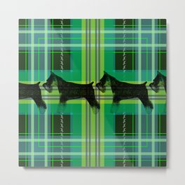 Sniffing Schnauzers in Green Plaid Metal Print