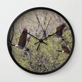 Flight of Three Wall Clock