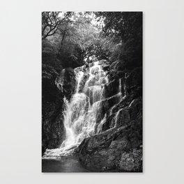shiraito falls, fukuoka, Japan june 2018 (film photography) Canvas Print