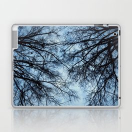 Sky Fall Laptop & iPad Skin
