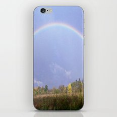 Under the Rainbow iPhone & iPod Skin