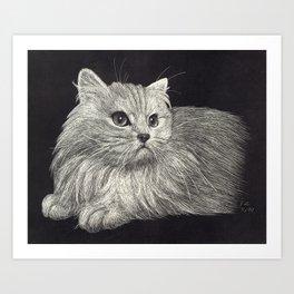 Scratchboard Cat Art Print