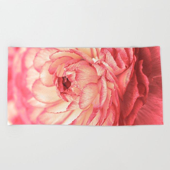 Vintage Ranunculus (9) Beach Towel