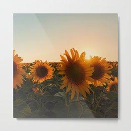 suns Metal Print