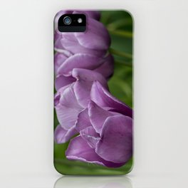 Purple tulips in a row iPhone Case