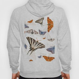 Colorful butterflies of europe Hoody
