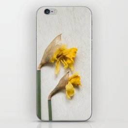 Daffodil 2 iPhone Skin