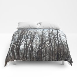 On a Cold Day Comforters