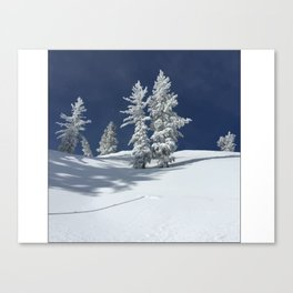 Bluebird Day Canvas Print
